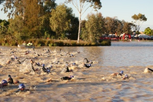 Swim start at Shepparton Half Ironman